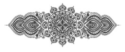 51282814 - set of ornamental indian elements and symbols