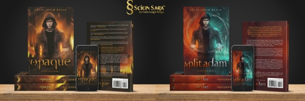 Book Series Twitter Banner 2