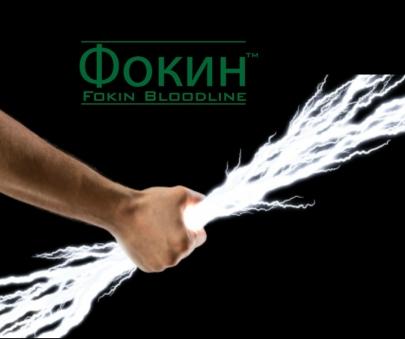 Fokin Bloodline Post 2